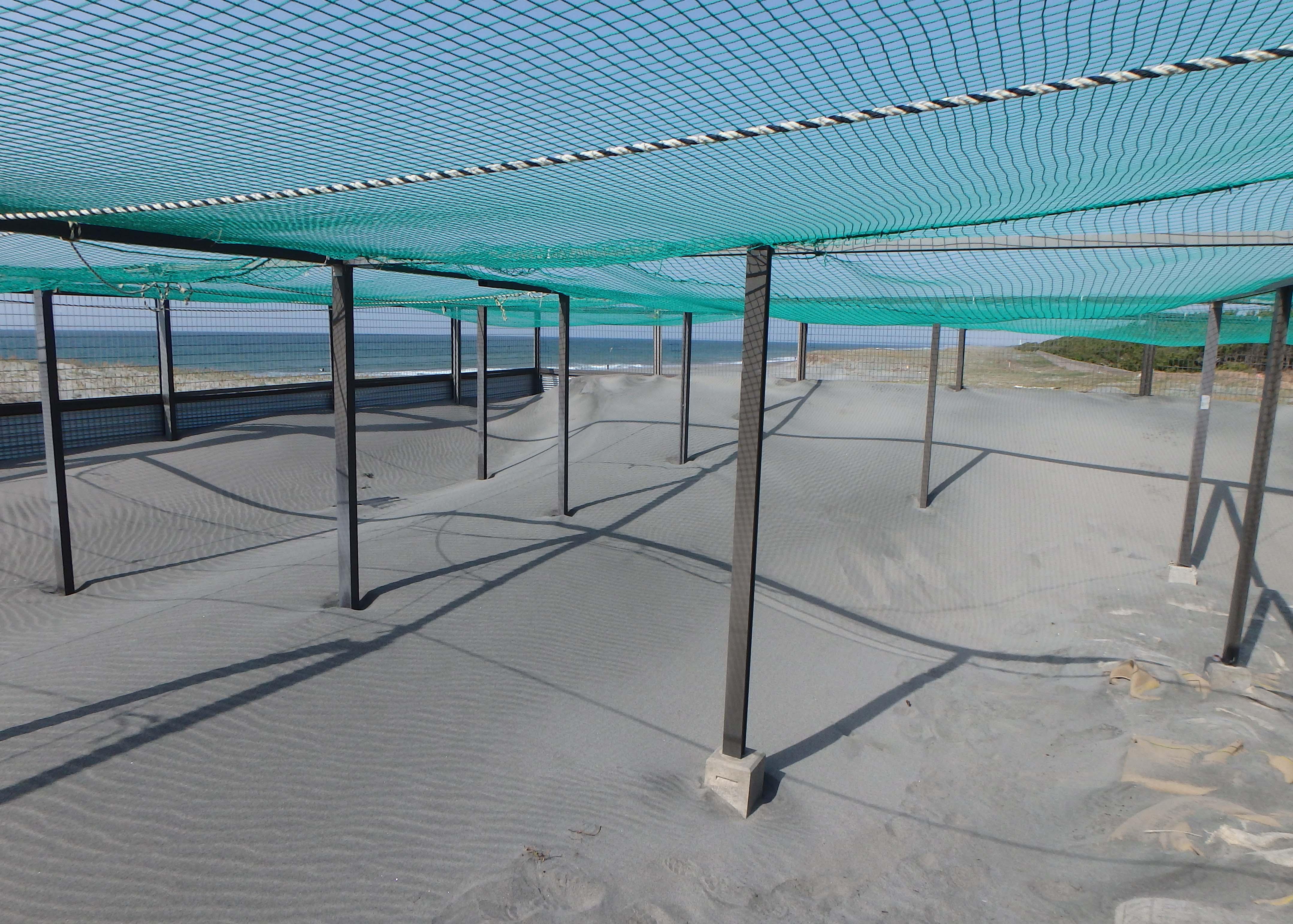 ウミガメの卵の保護柵整備活動